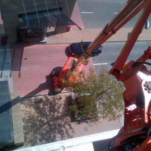 Installation & Rigging  - SPSInstallations052 300x300